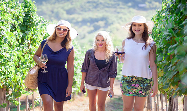 Wine Road Magical Mystery Tours